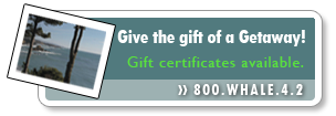 Gift Certificates available at Whale Watch Inn